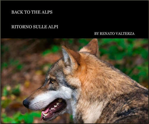 Back to the Alps cover